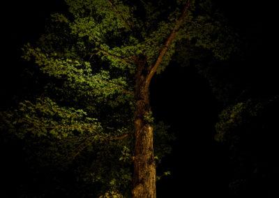 Hyatt-landscapelighting16