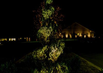 Hyatt-landscapelighting6